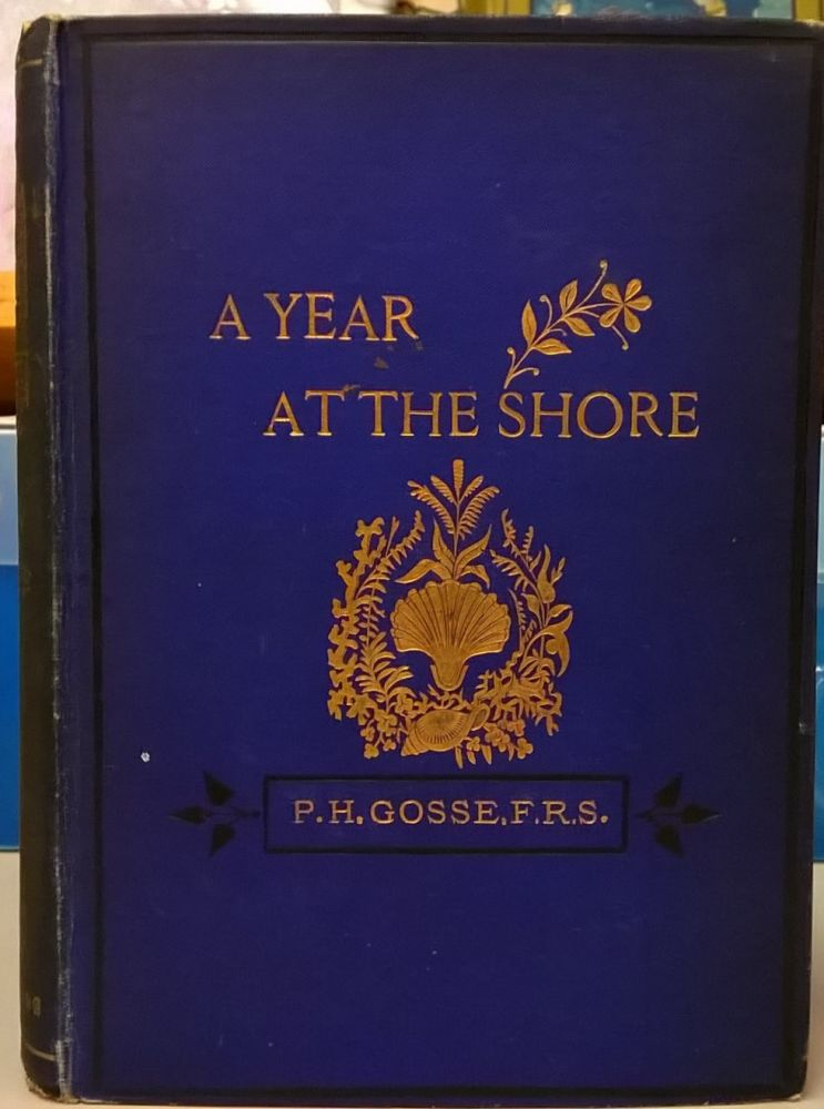A Year at the Shore. Philip Henry Gosse.
