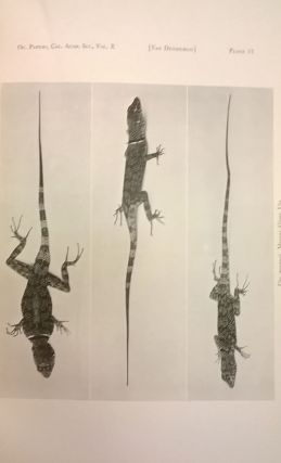 The Reptiles of Western North America (Occasional Papers of the California Academy of Sciences X) 2 volumes.