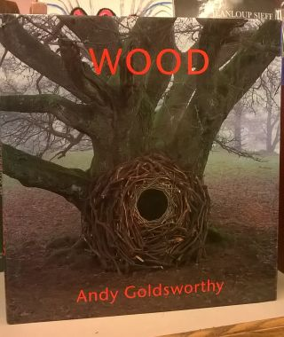 Wood. Andy Goldsworthy