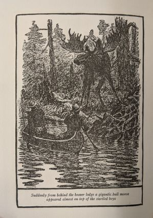 Two Boys in Beaver-Land